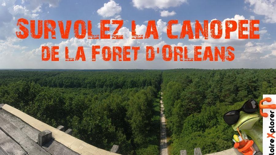 Belvédère des Caillettes, où observer le mieux la forêt d'Orléans