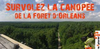 Belvédère des Caillettes en Forêt d'Orléans