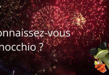 Spectacle Pyrotechnique nuit de Sologne 2018 Pinocchio