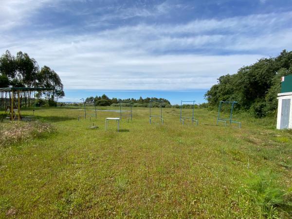 campo de tiro 2