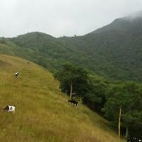 Cerro Sañe, mirador turístico al norte de la ciudad de Loja