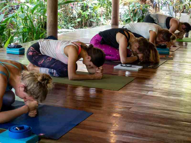 yoga students resting position