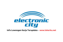 PT-Electronic-City