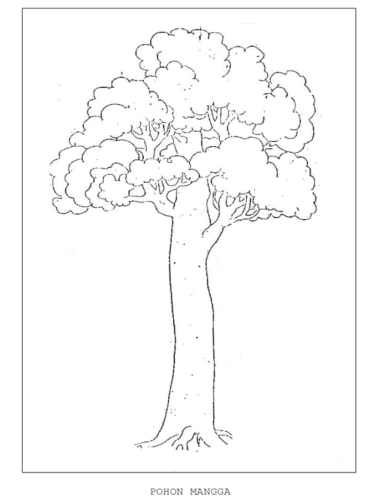 Gambar Pohon Psikotes : gambar, pohon, psikotes, Jawaban, Psikotes, Gambar, Orang,, Pohon, Rumah, [Cara, Lengkap, Lulus], LokerPintar.id