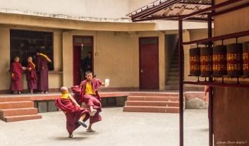 Sikkim2017_1320