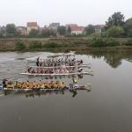 Drachenboot-Rennen Riesa
