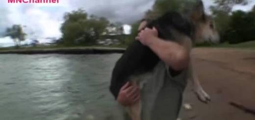 Schoep, é um cão que todos dias é levado para o rio para conseguir dormir