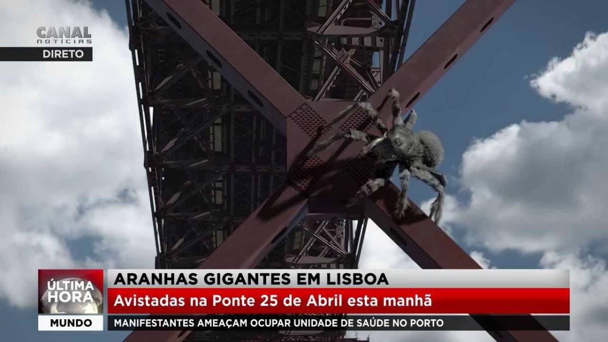 Última hora: Aranhas gigantes na Ponte 25 de Abril em Lisboa