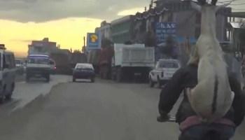 O vídeo que se tornou viral na internet