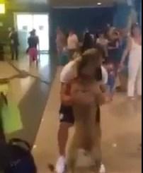 Reacção emocionante de um cão ao reencontrar o seu dono no aeroporto