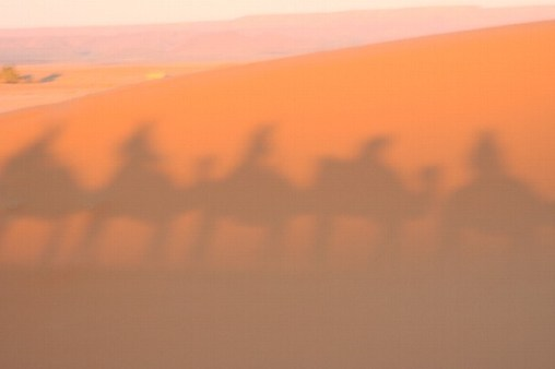 L - Morocco - Camel safari ~ Sunset, Erg Chebbi