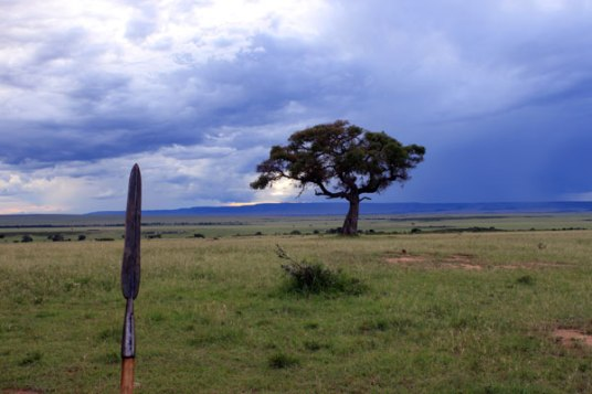 Siololo's spear, storm, and tree
