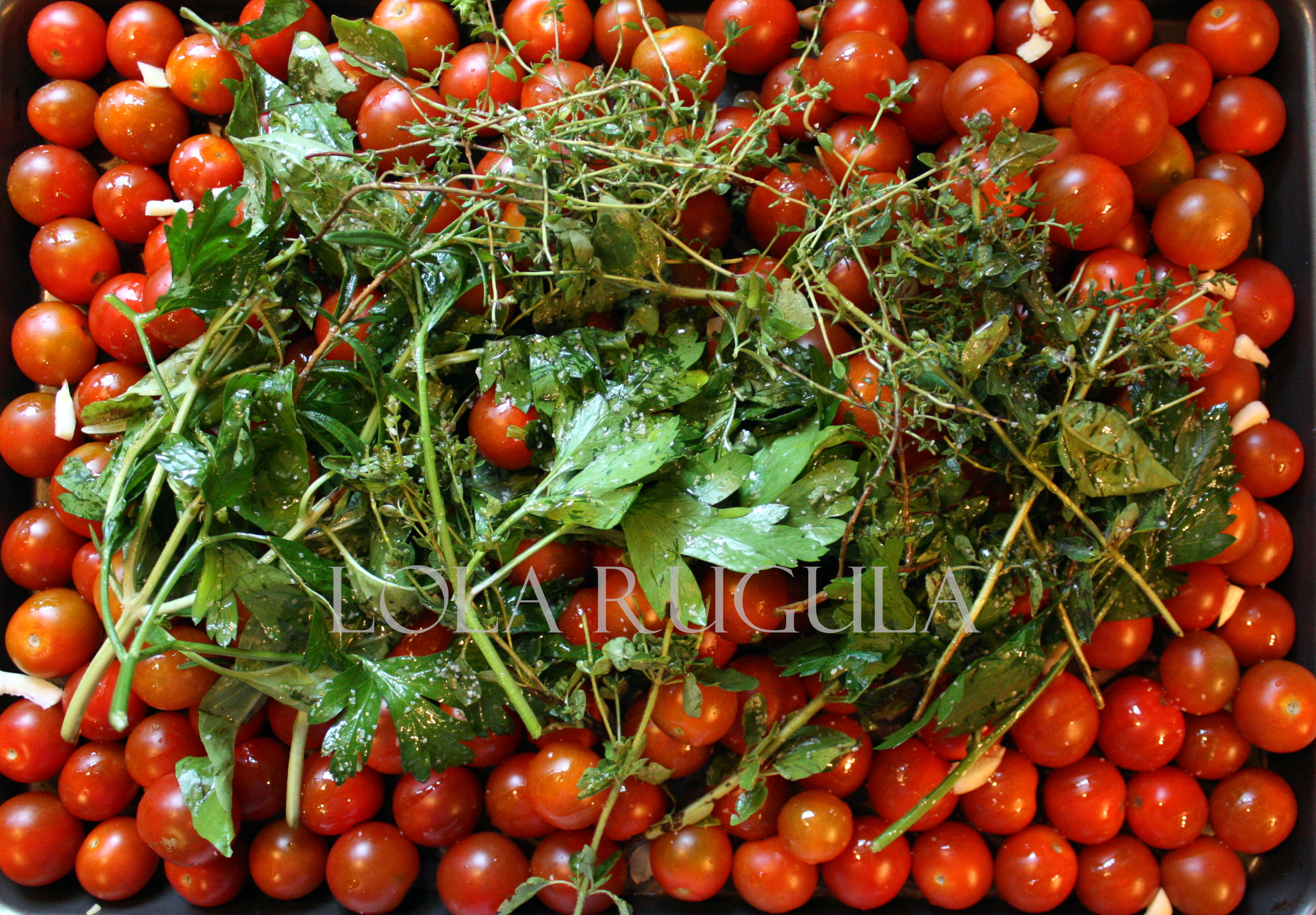 how to grow cherry tomatoes from fresh cherry tomatoes