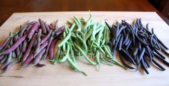 lola rugula garden beans photo