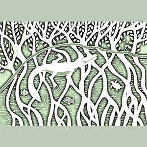 Réquiem por un manglar