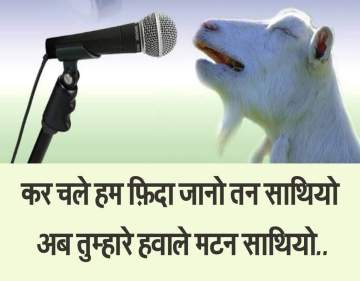 goat singing before eid