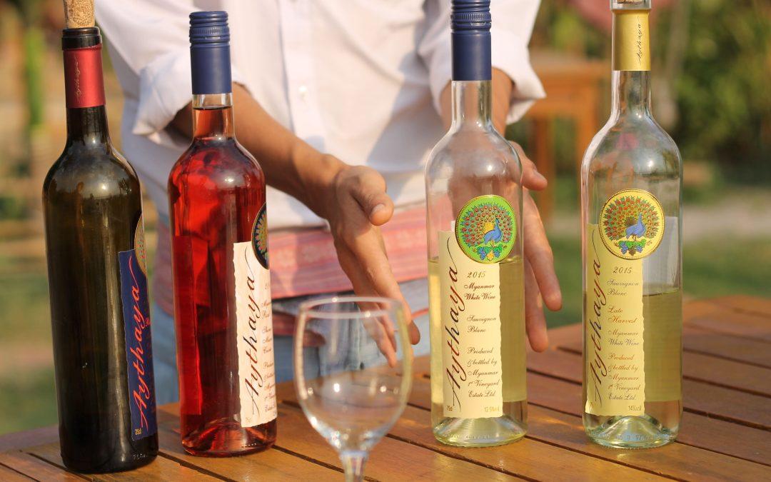 Das Weingut von Aythaya