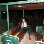 Trem Ecológico