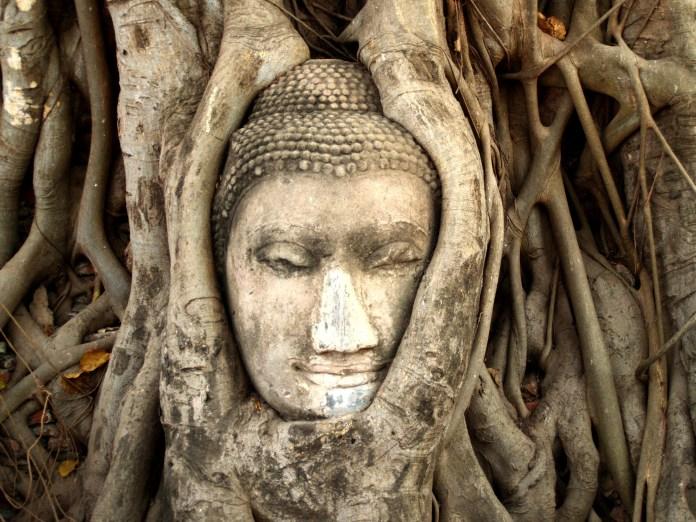 Tailândia-Comportamento-Buda