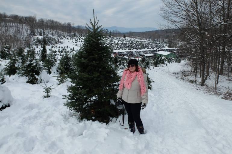 Nova York no Natal - Colher Árvore