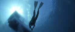 Mergulho em Paraty   Como ter um passeio sem arrependimentos