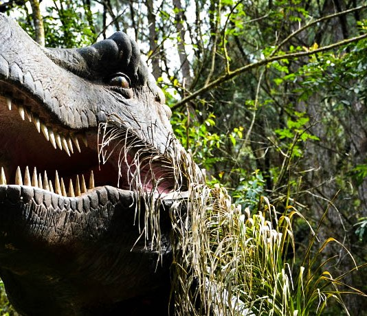 Vale dos Dinossauros - 0