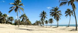 Onde ficar em Fortaleza | Dicas e hotéis mais interessantes (um deles vai caber no seu bolso)