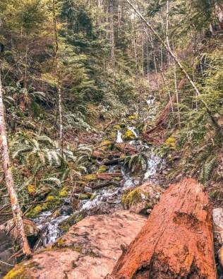 Stunning Seattle Hikes - Poo Poo Point