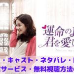 『運命のように君を愛してる』あらすじ・キャスト・ネタバレ・口コミ・動画配信サービス・無料視聴方法の紹介!