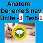 Auzef Çocuk Gelişim Anatomi Ünite 3 Test-1