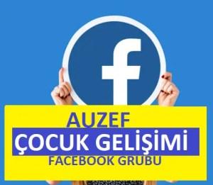 Çocuk Gelişimi - facebook