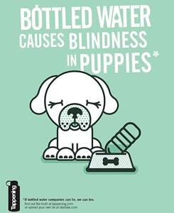 Bottled Water Puppy Blindness