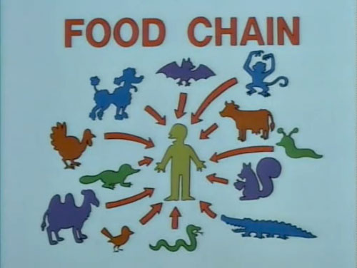 Food Chain - This Is The Way We Eat Everything