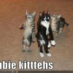 LOL Zombie Kittens