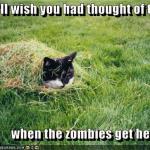LOL Zombie Cats Hide In Grass