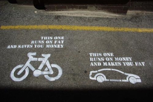 Bike or Car? Money or Fat?