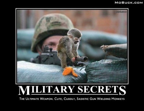 Military Secrets Are Cute and Cuddly
