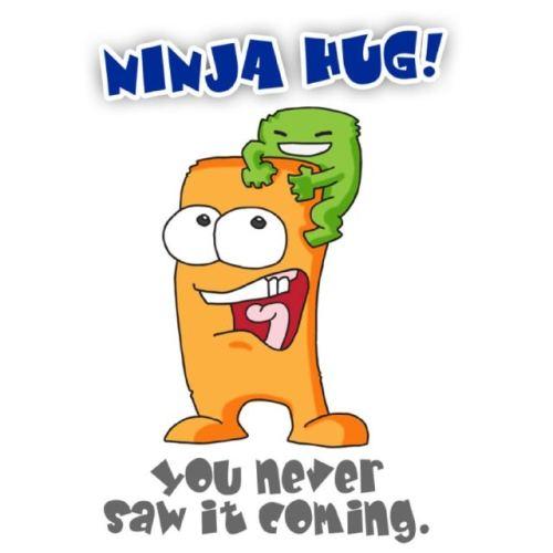 Ninja Hug!!!!!