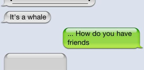 Texting Whale