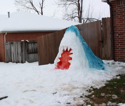 Watch out for snow sharks this winter!