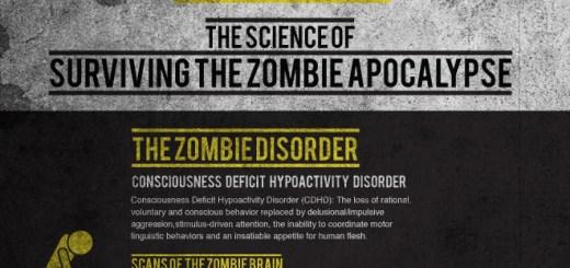 Zombie Distraction
