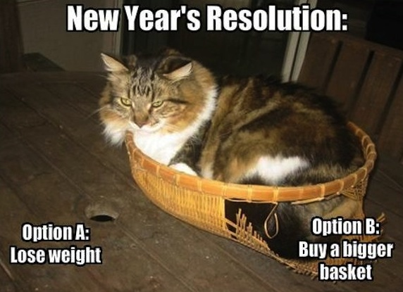 Fat Cat - New Year