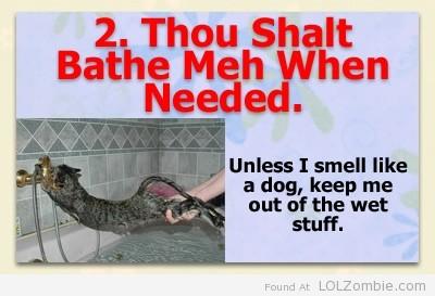 2-Bath