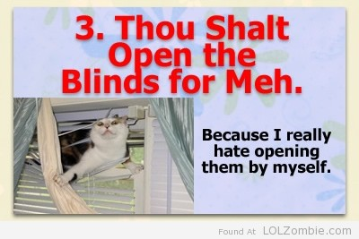 3-Blinds