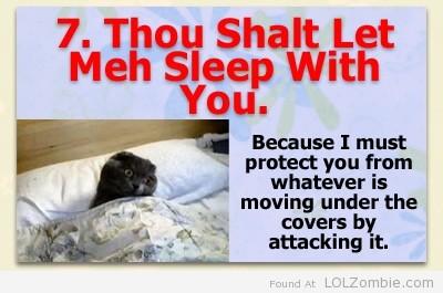 7-Sleep