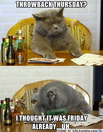Sad Thursday Cat