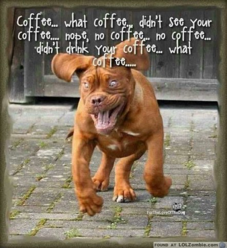 Dog Drinking Coffee