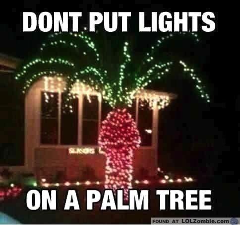 palm-tree-lights
