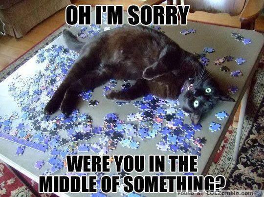 Cat on Puzzle