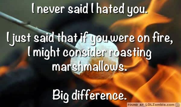 Roasting Marshmellows